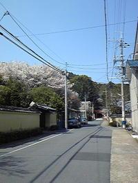 Photo065