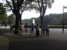 Photo019