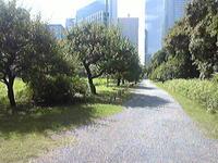 Photo070_3