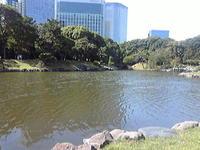 Photo105_2