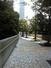 Photo025