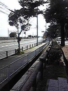 Photo248